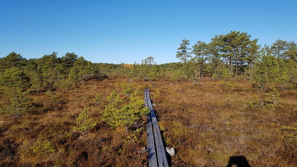 Färnebofjärden nationalpark